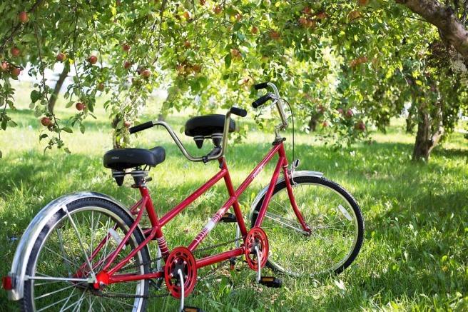 tandem-bike-905067_960_720