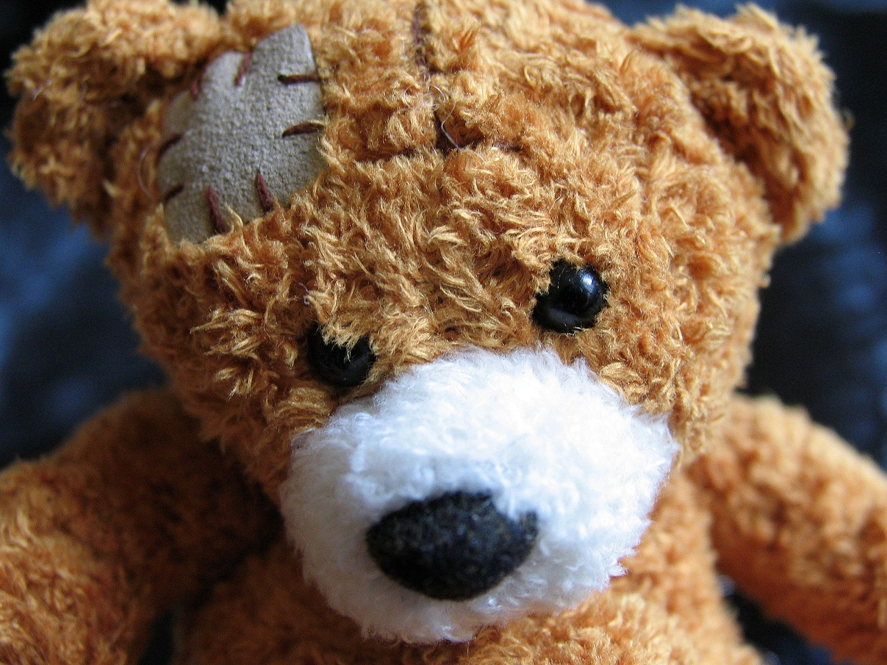 plush-teddy-bear-1082525_1280.jpg